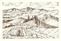 Engraved hand drawn in old sketch and vintage style. For label. Italian Tuscany fields background and cypress trees. harvesting and haystacks. Rural landscape Royalty Free Stock Photos