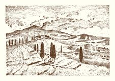 Engraved hand drawn in old sketch and vintage style for label. Italian Tuscany fields background and cypress trees Royalty Free Stock Photography