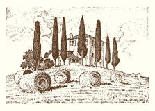 Engraved hand drawn in old sketch and vintage style for label. Italian Tuscany fields background and cypress trees. Harvesting and haystacks. Rural landscape Royalty Free Stock Images