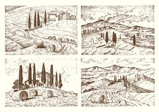 Engraved hand drawn in old sketch and vintage style for label. Italian Tuscany fields background and cypress trees Stock Photo