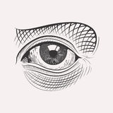 Engraved handdrawn eye Stock Image