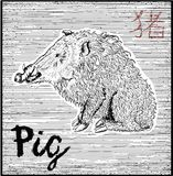 Engraved illustration of zodiac symbol with pig and lettering Stock Images