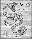 Engraved illustration of zodiac symbol with snake and lettering Stock Photography