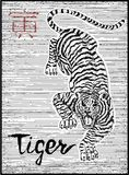 Engraved illustration of zodiac symbol with tiger and lettering Royalty Free Stock Images