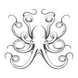 Engraved octopus vector icon Royalty Free Stock Image