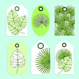 Engraved palm leaves set of tags Royalty Free Stock Photo
