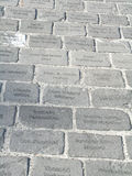Engraved paving stones Stock Photos