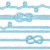 Engraved ropes and knots. In vintage style, vector seamless pattern with eight knot, sailor knot and rope swirl Royalty Free Stock Photography
