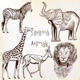 Engraved savanna animals set Stock Photography