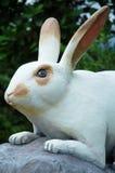 Engraved stone rabbit Stock Images