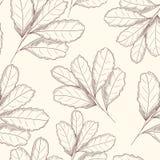 Engraved style leaf seamless pattern. Hand drawn vector illustration. D stock illustration