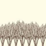 Engraved wheat background. Vector background with engraved field of wheat, hand drawn illustration in vintage style Royalty Free Stock Photos