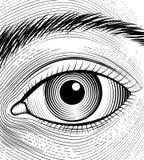 Engraving human eye Stock Images