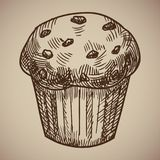 Engraving of muffins. Delicious chocolate pastry sketch. Engraving menu for the restaurant. Vector illustration. EPS 10 Royalty Free Stock Photo