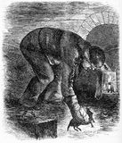 Sewer hunter catching a rat. Engraving of a sewer hunter catching a rat while wearing thick mittens during the Victorian era in London. From an original Royalty Free Stock Photos