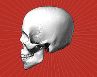 Engraving skull in side view on red BG Stock Photos
