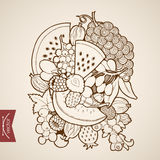 Engraving vintage hand drawn vector fruit grapes c. Engraving vintage hand drawn vector fruit. Pencil Sketch melon, watermelon, berry, strawberry, grapes, figs Stock Photos