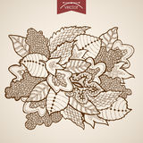 Engraving vintage hand drawn vector leaves Sketch Stock Photography