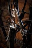 Engrenagem de cavalo Fotografia de Stock Royalty Free