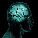 Engrenagens do cérebro Imagem de Stock