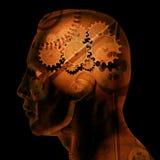 Engrenagens do cérebro Fotos de Stock