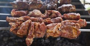 Engrillad kebab på steknålar av rostfritt stål som lokaliseras på rosebirdfyrpannan royaltyfri fotografi