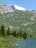 Engstlenalp和Engstlensee湖看法在瑞士在初夏 免版税库存照片