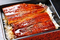 Enguias grelhadas no arroz imagem de stock royalty free