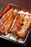 Enguias grelhadas no arroz imagens de stock