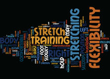 Enhance Your Flexibility Word Cloud Concept Royalty Free Stock Photo