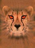 Enhanced cheetah. Digitally enhanced portrait of a cheetah royalty free illustration
