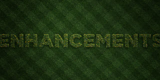 ENHANCEMENTS - fresh Grass letters with flowers and dandelions - 3D rendered royalty free stock image Royalty Free Stock Photos