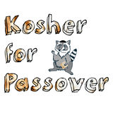 Enhorabuena en el día de fiesta judío de la pascua judía con el mapache de la historieta Fotos de archivo libres de regalías