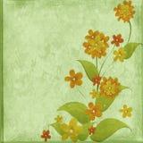 Enhorabuena floral Stock de ilustración