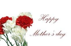 Enhorabuena para el d?a de madre con los claveles ilustración del vector