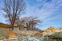 Enig huis op het eiland Royalty-vrije Stock Foto's