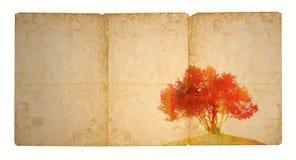 Enige boom in rode tonen op oud bevlekt document Met exemplaarruimte stock foto's