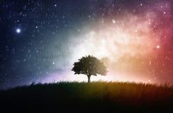 Enige boom ruimteachtergrond Stock Afbeelding