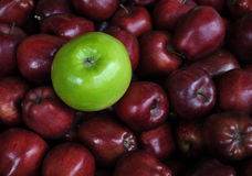 Enige Groene Appel met Bossen van Rode Appelen Royalty-vrije Stock Afbeeldingen