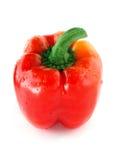 Enige rode groene paprika. Royalty-vrije Stock Foto's