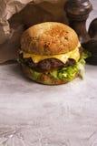 Enige rundvleescheeseburger Stock Foto
