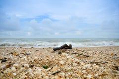 Enige schoen bij het strand stock afbeeldingen