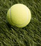 Enige Tennisbal Stock Afbeeldingen