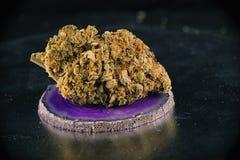 Enige van de de zonneschijndagdroom van de cannabisknop de marihuanaspanning Stock Afbeelding