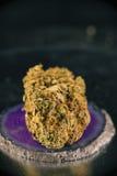 Enige van de de zonneschijndagdroom van de cannabisknop de marihuanaspanning op dark Stock Foto's