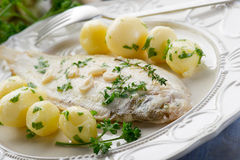 Enige vissen met aardappels Royalty-vrije Stock Foto's