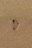 Enige voetafdruk in het zand stock fotografie