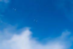 Enige zeepbel Stock Foto