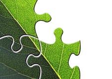 Enigma ambiental Foto de Stock