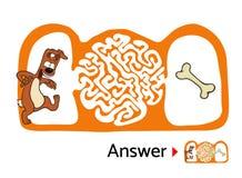 Enigma do labirinto para crianças com cão e osso Ilustração do labirinto, solução incluída Imagens de Stock Royalty Free
